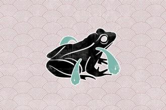 Kind of Blah by Frog