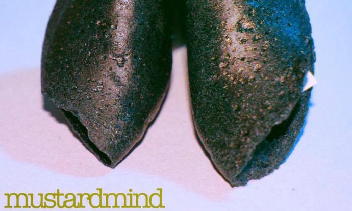 mustardmind