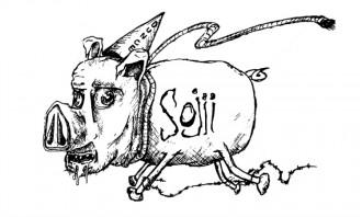 sojii milk sop